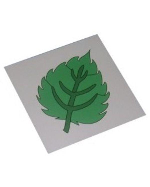 Control Card - Leaf Puzzle