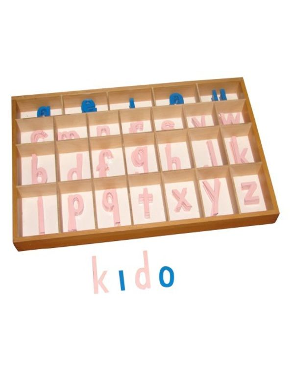 Moveable Alphabet Print Large Wooden