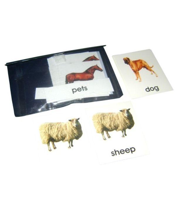 3 Part Nomenclature cards: Pets