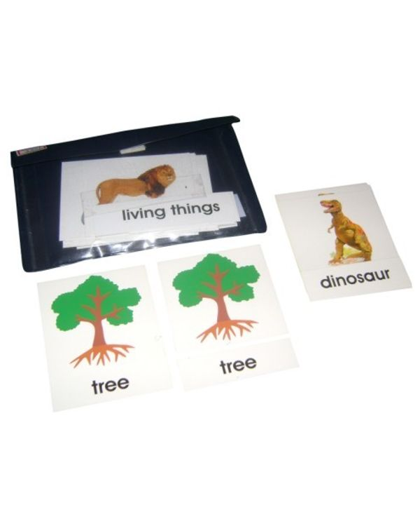 3 Part Nomenclature Cards: Living Things