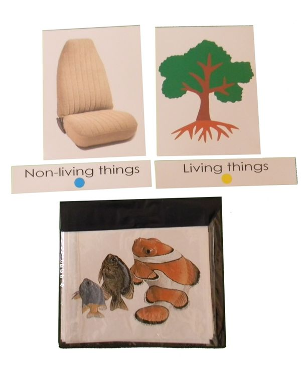 Living & Non-living things: Classification Cards