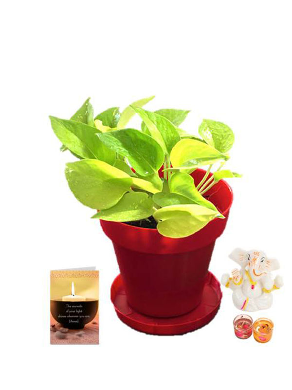 Golden Pothos in Red Colorista Pot and Ganesha with Candle Combo