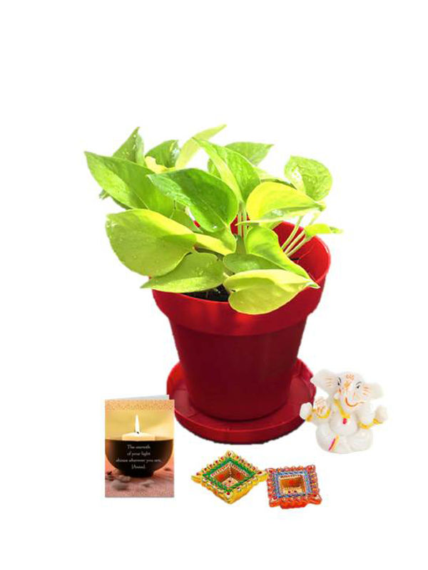Golden Pothos in Red Colorista Pot and Ganesha with Diya Combo
