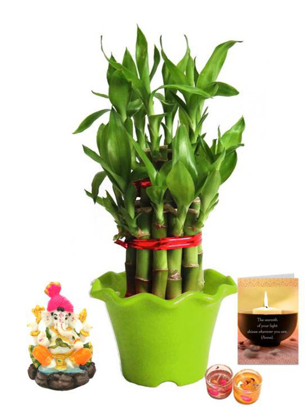 2 Layer Lucky Bamboo in Green Blossom Pot and Pagdi Ganesha with Candle Combo