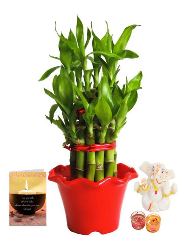 2 Layer Lucky Bamboo in Red Blossom Pot and Ganesha with Candle Combo