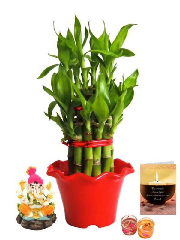 2 Layer Lucky Bamboo in Red Blossom Pot and Pagdi Ganesha with Candle Combo