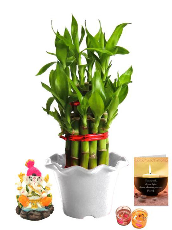 2 Layer Lucky Bamboo in White Blossom Pot and Pagdi Ganesha with Candle Combo
