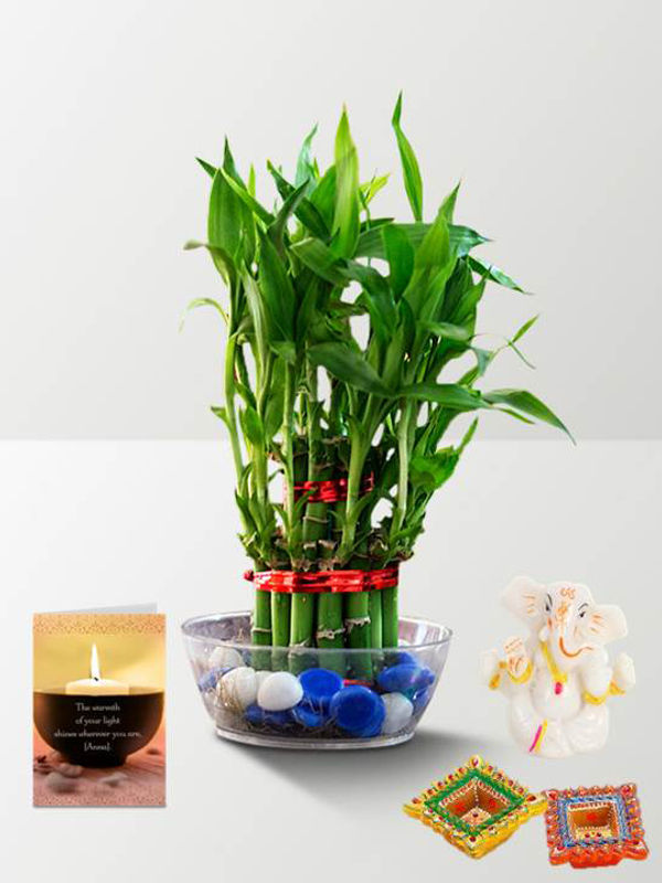 2 Layer Lucky Bamboo and Ganesha with Candle Combo