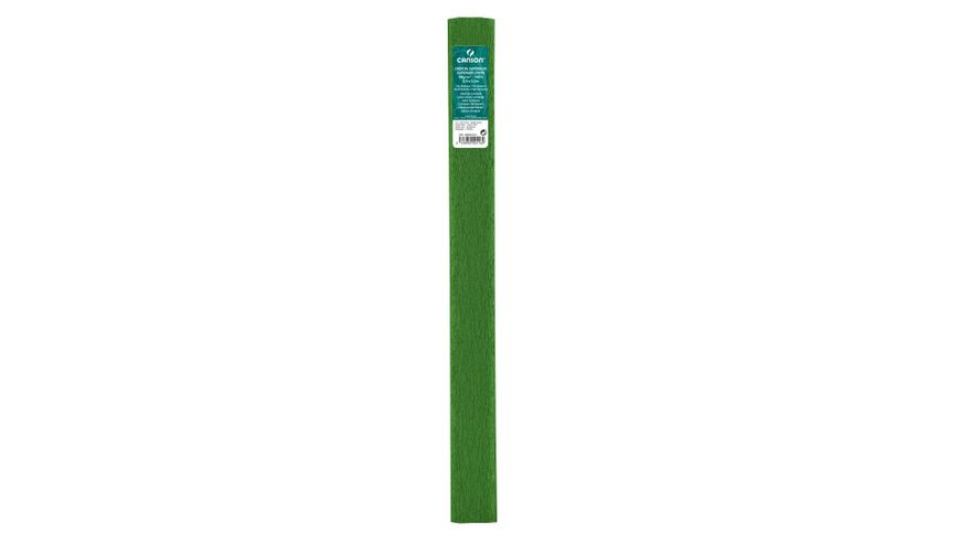 Canson Superior Crepe Paper Roll - 48 GSM, 50 x 250 cm  - Bright Green
