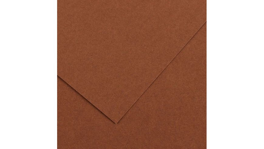Canson Colorline 300 GSM A4 Pack of 5 Smooth & Light Grain Sheets - Nut