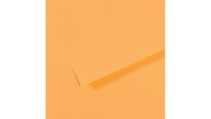 Canson Mi-Teintes 160 GSM 55 x 75 cm Pack of 25 Honeycomb & Fine Grain Sheets - Champagne
