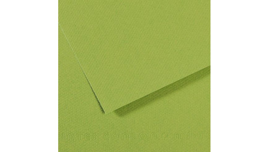 Canson Mi-Teintes 160 GSM 55 x 75 cm Pack of 25 Honeycomb & Fine Grain Sheets - Apple Green