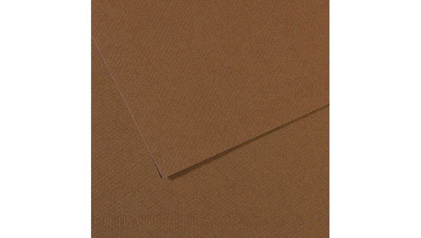 Canson Mi-Teintes 160 GSM 55 x 75 cm Pack of 25 Honeycomb & Fine Grain Sheets - Sepia