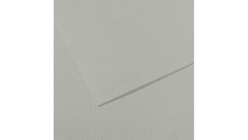 Canson Mi-Teintes 160 GSM 55 x 75 cm Pack of 25 Honeycomb & Fine Grain Sheets - Sky Grey