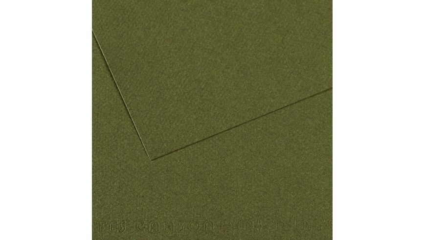 Canson Mi-Teintes 160 GSM 55 x 75 cm Pack of 25 Honeycomb & Fine Grain Sheets - Ivy
