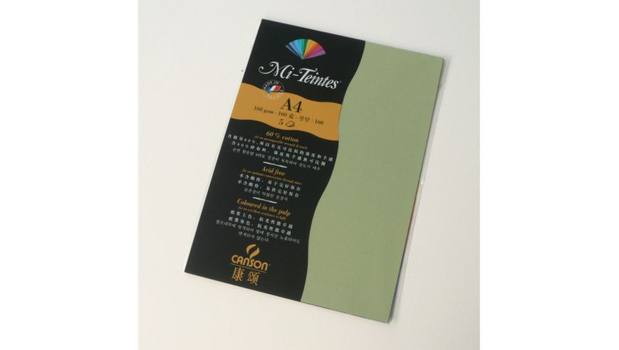 Canson Mi-Teintes 160 GSM A4 Pack of 5 Honeycomb & Fine Grain Sheets - Light Green