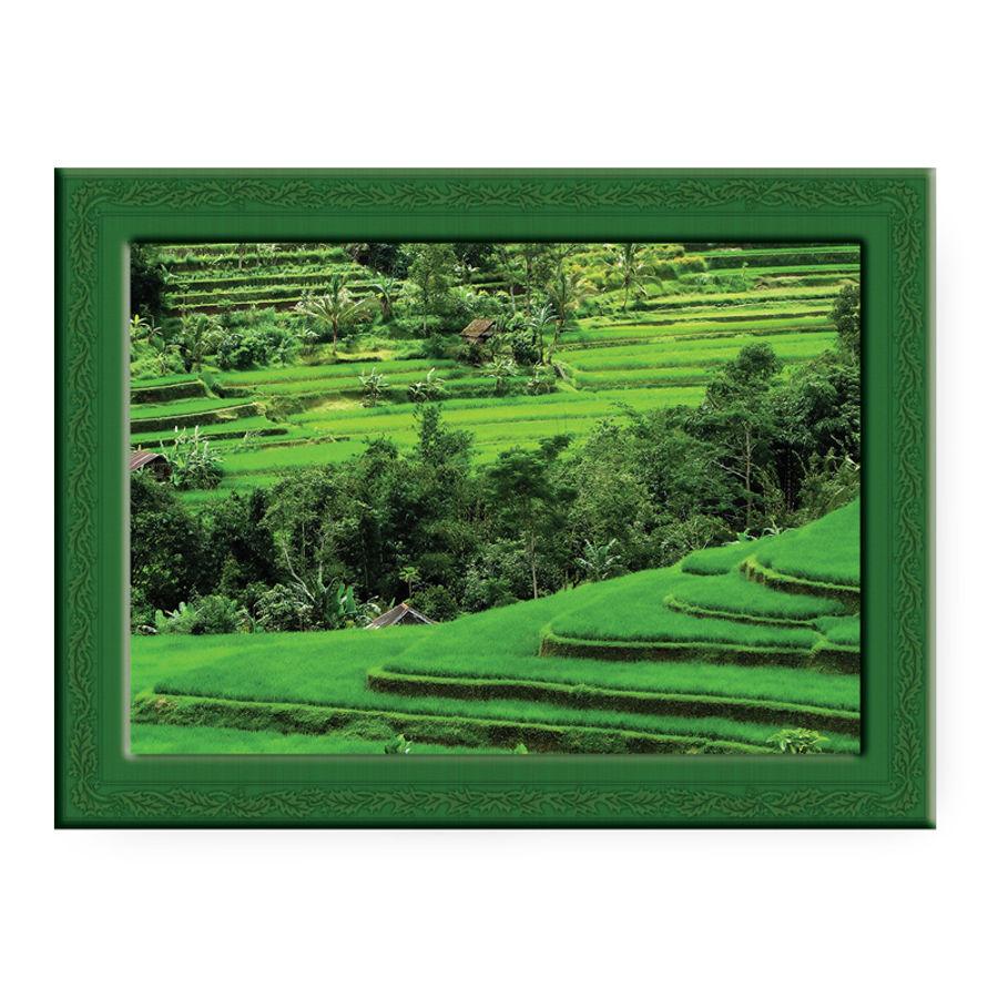Lush Green Landscape | MahaVastu