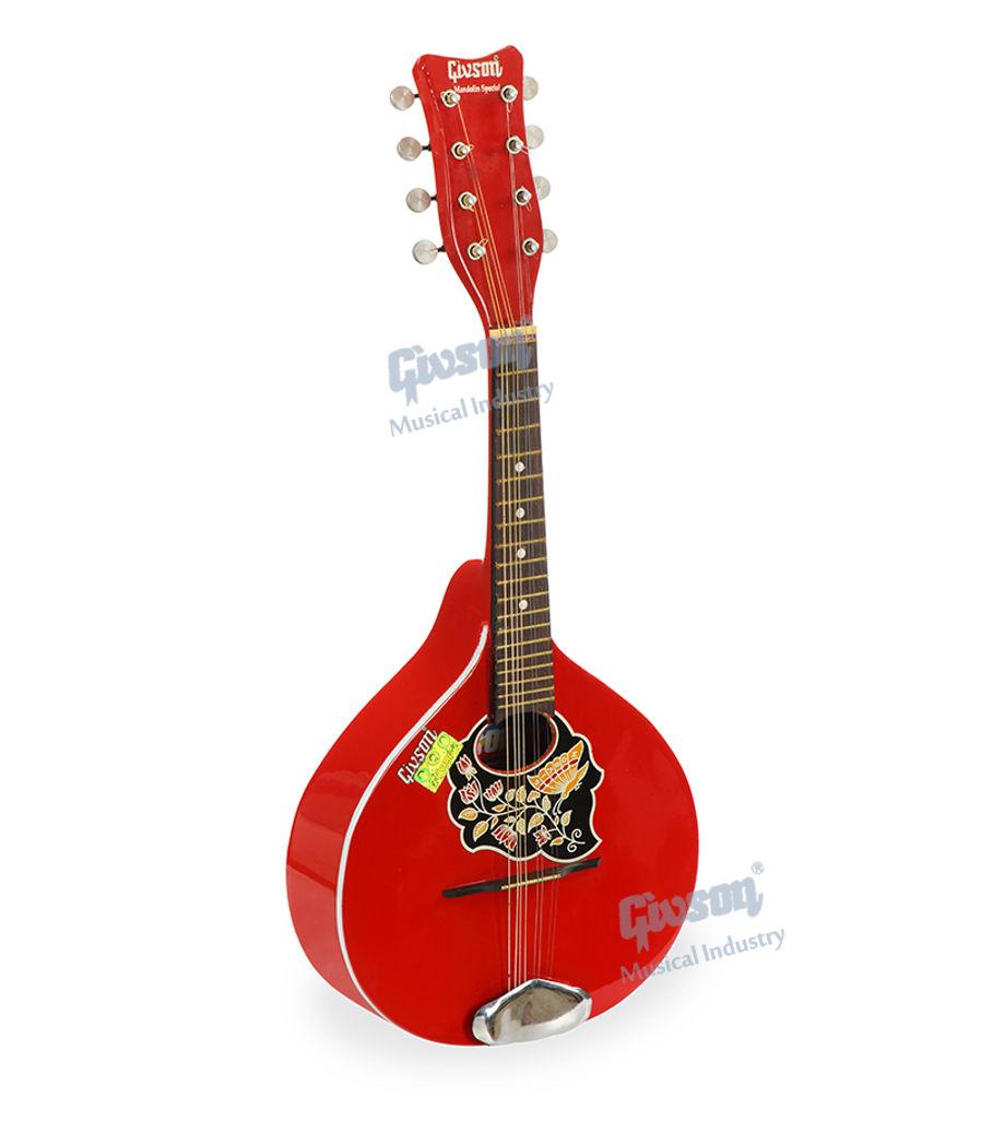 Mandolin (Special) 8 String Accoustic Mandolin