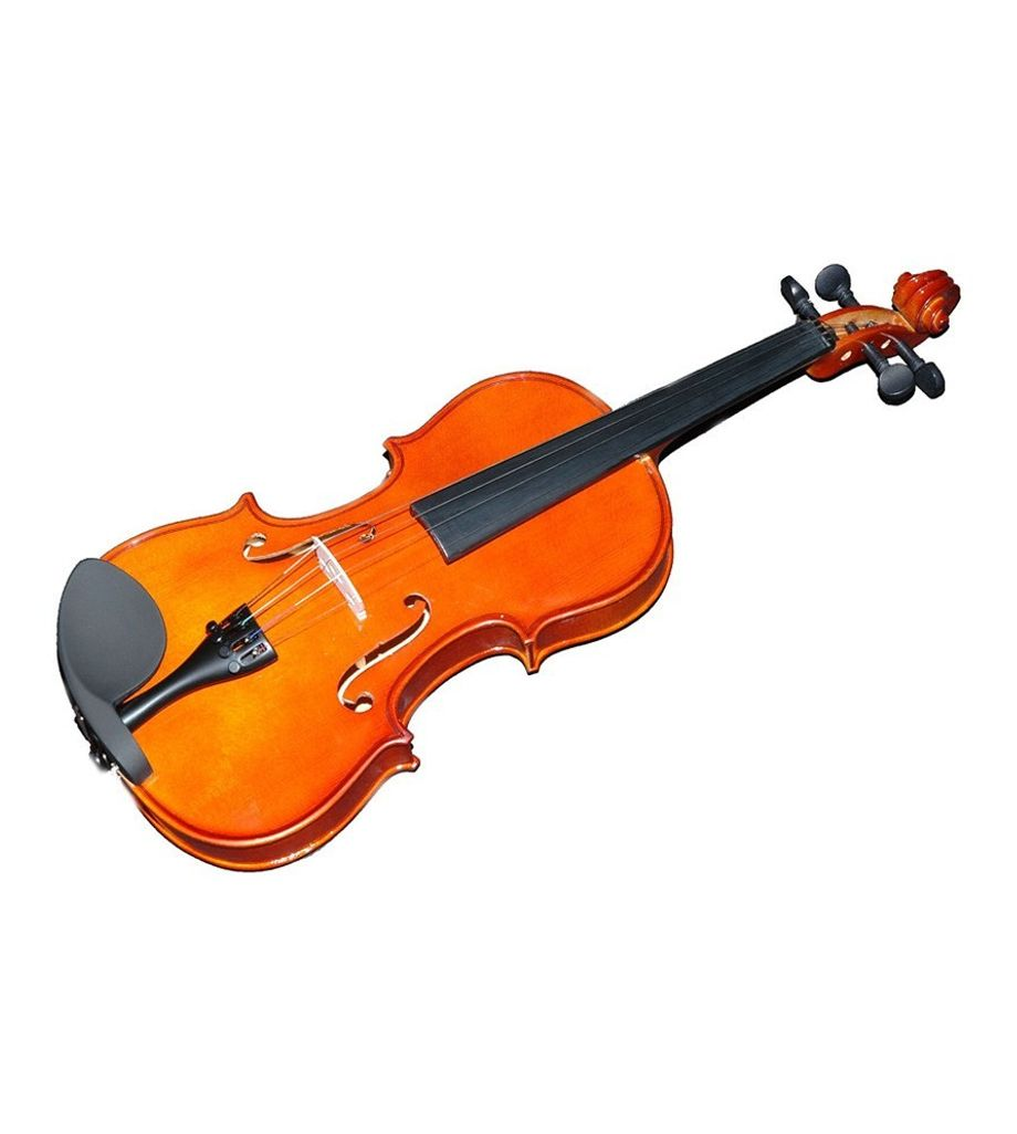 SG MusicalS Top And Bow With Horse Hair Violin