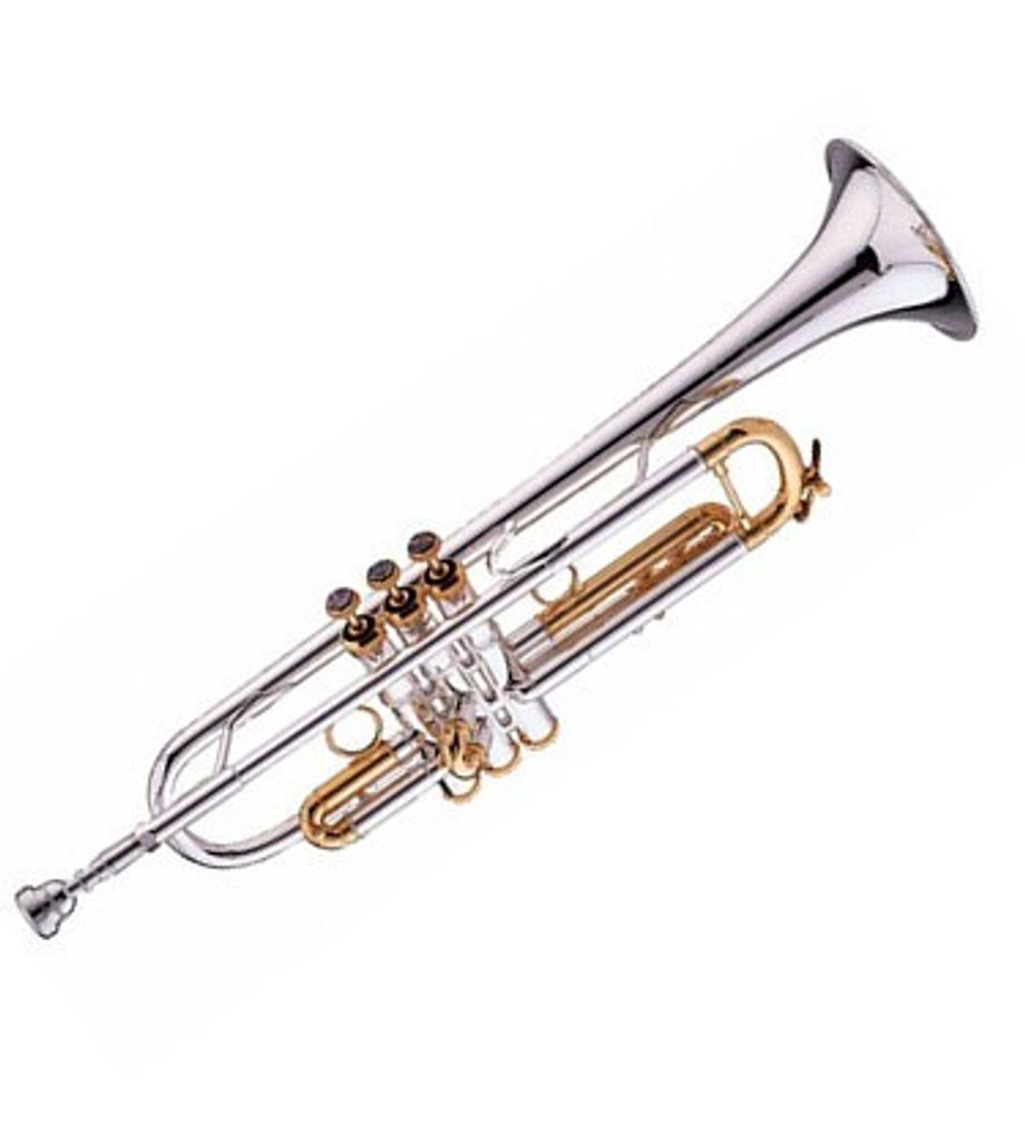 SG Musical Miles Davis 1926-1991 Gold Trim Trumpet Freebie