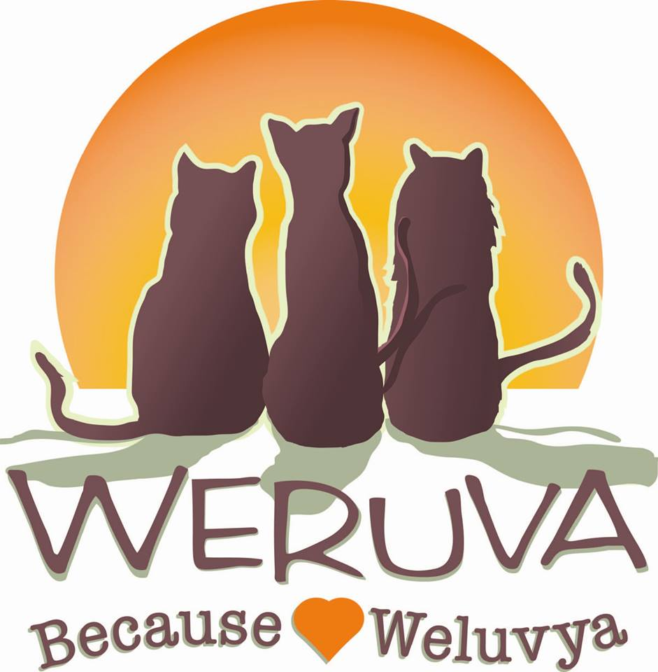 Weruva Spokane Washington