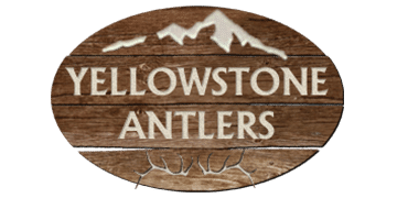 Yellowstone Antlers Rochester Hills Michigan