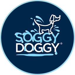 Soggy Doggy Asheville North Carolina