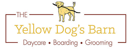The Yellow Dog's Barn Logo
