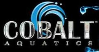 Cobalt Aquatics Albany New York