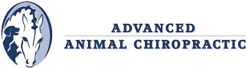 Advanced Animal Chiropractic Logo