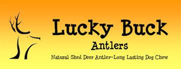 Lucky Buck Antlers Dallas Texas