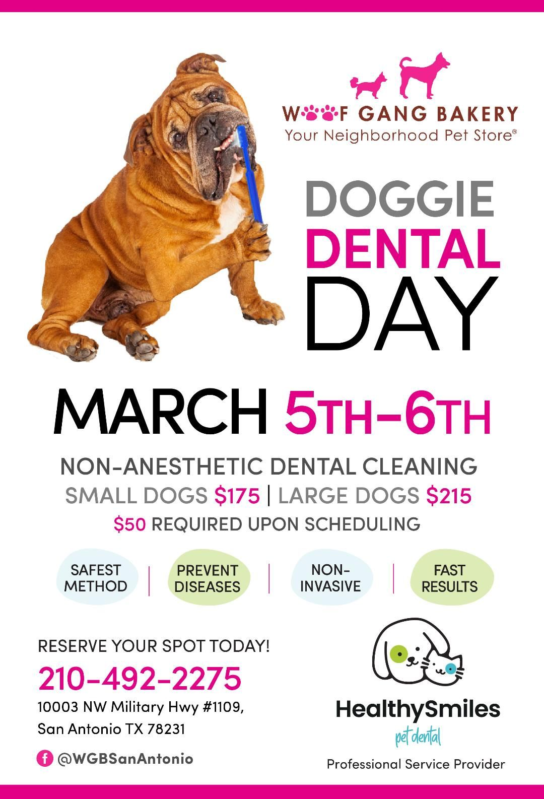 ANETHESIA FREE DENTAL CLEANINGS!