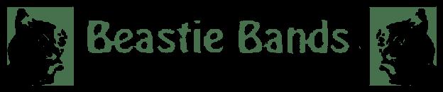 Beastie Bands Bainbridge Island Washington