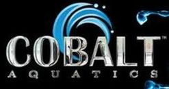 Cobalt Aquatics West Palm Beach Florida