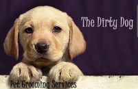 Dirty Dog Brentwood Tennessee