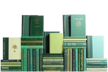Modern Boxwood Book Wall, S/50