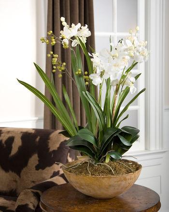 Uttermost Moth Orchid Planter