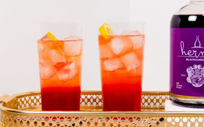 russian spring punch 5 400x250 Vodka