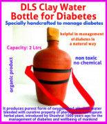 Diabetes Clay Bottle(#1149) - Getkraft.com