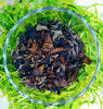 Organic White Tea (Herbal White) with Tulsi and Lemon(#1322)-thumb-0
