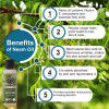 Avnii Organics 100 Pure Natural Neem Oil Ideal For Hair Skin Care Nails Scalp Nourishment 100ml(#1908)-thumb-2