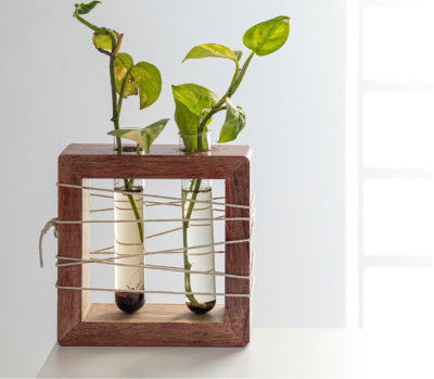 Apaiser Mango Wood Succulent Holder with 2 Test tubes(#2311)-gallery-0