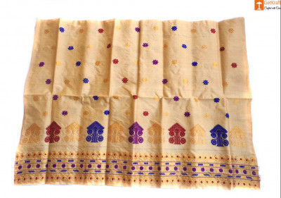 Simple Ethnic Mekhela made from Toss Muga Silk(#683)-gallery-0