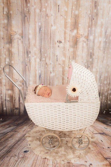 Newborn Baby Pram Photography