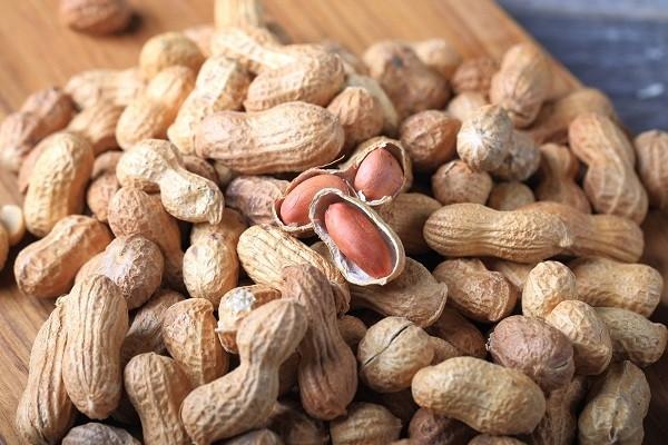 Ketahui 4 Manfaat Kacang Tanah yang Wajib Kamu Tahu