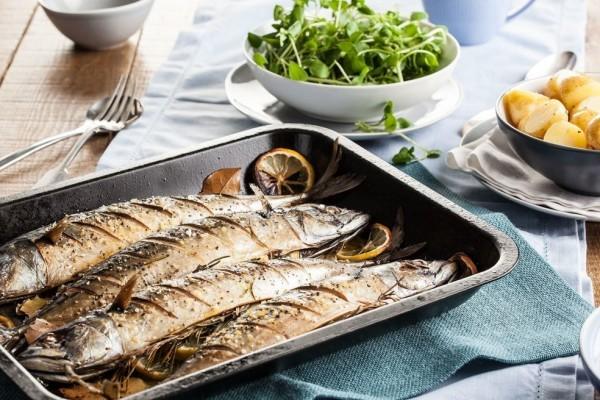 manfaat ikan tenggiri dan cara mengolahnya