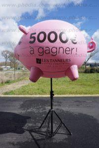 cochon gonflable