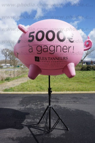 plv  ballon cochon sur trépied