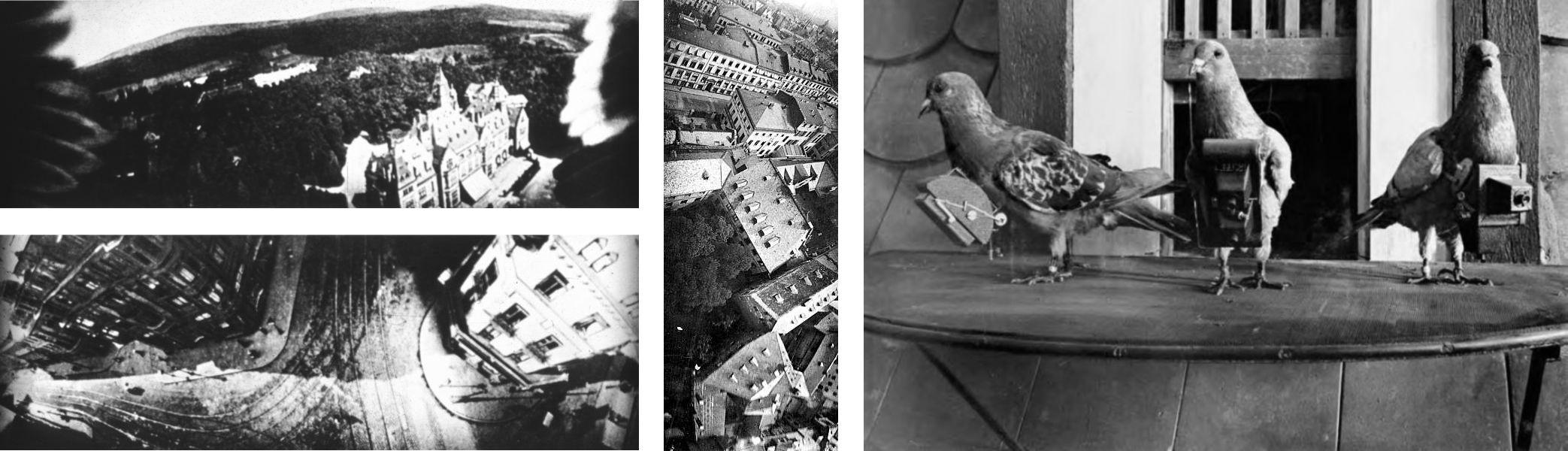 Photographie aérienne insolite, prises de vues par un pigeon photographe