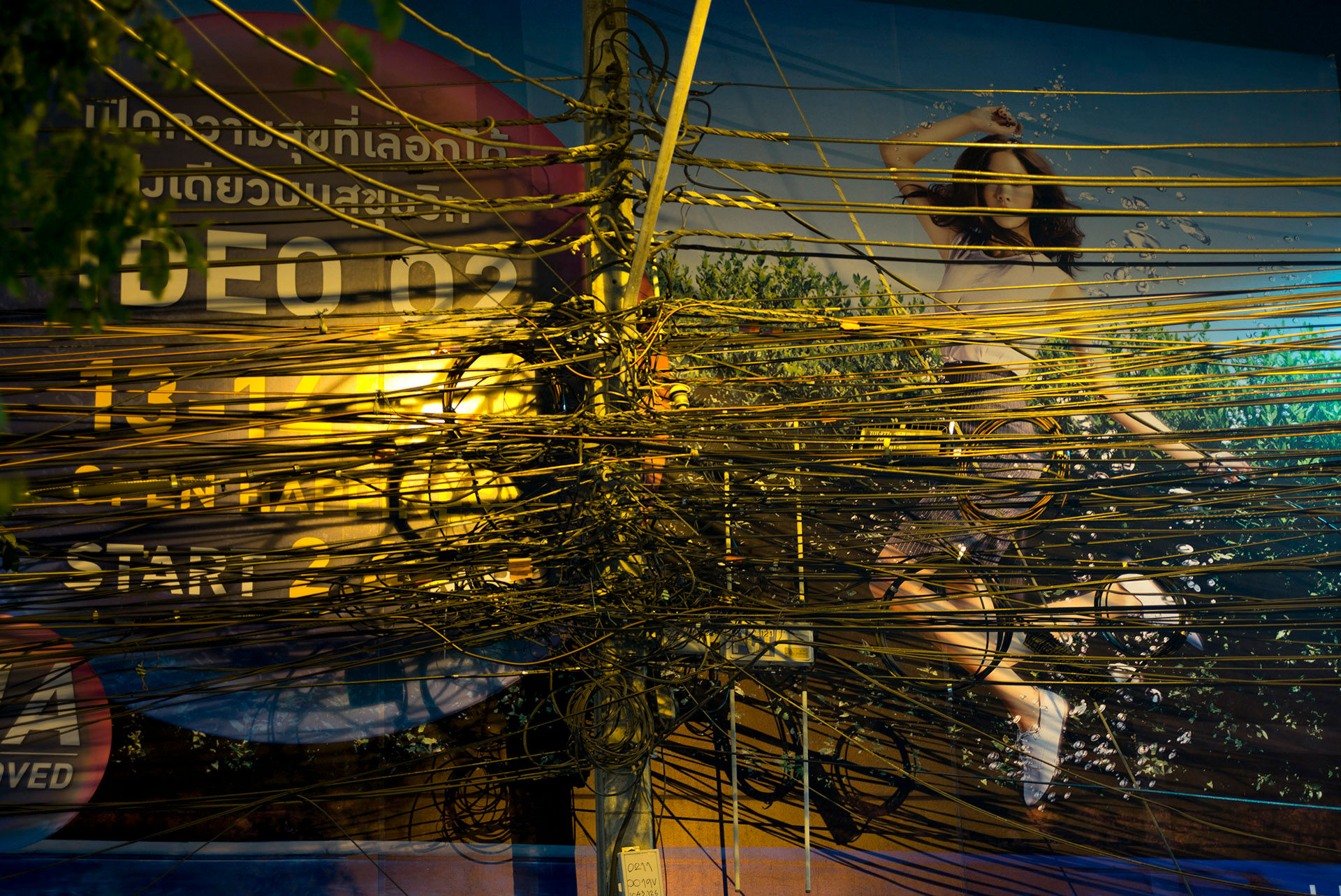 Girl in Wires